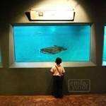 zoo_aquarium