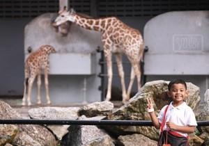 zoo_peace