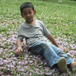 sitting on a bed of purple flowers