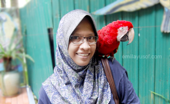 me-with-parrot