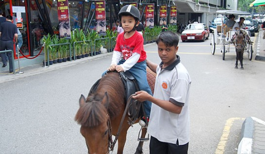 KL-Tower-Pony-RIde