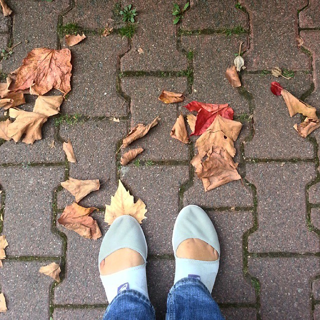 It's fall. #fromwhereistand #fall #autumn
