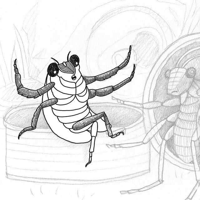 Meet John Cicada.